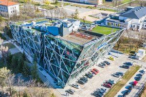 Collider Activity Center Walltopia